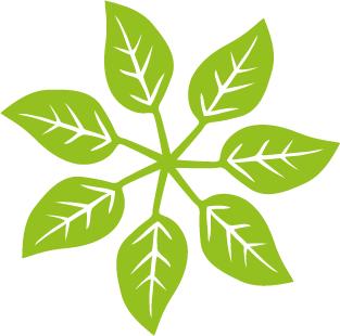 éolienne feuilles environnement energies renouvelables